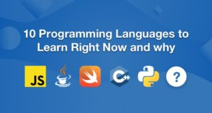Top 10 Programming Languages to Study in 2020