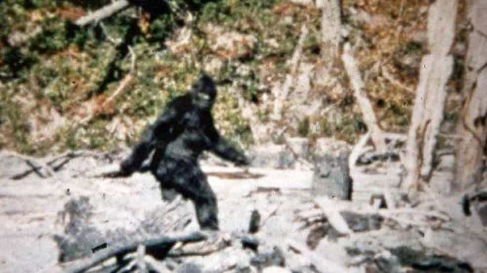 10 Unsolved Mysteries of The World - Sasquatch: The Bigfoot